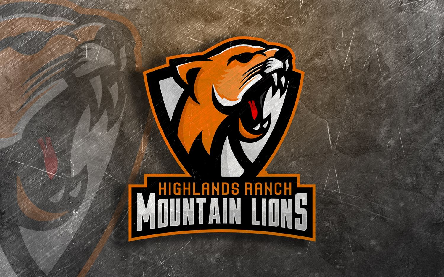 Highland Ranch Mountain Lions  - 10U - Larry