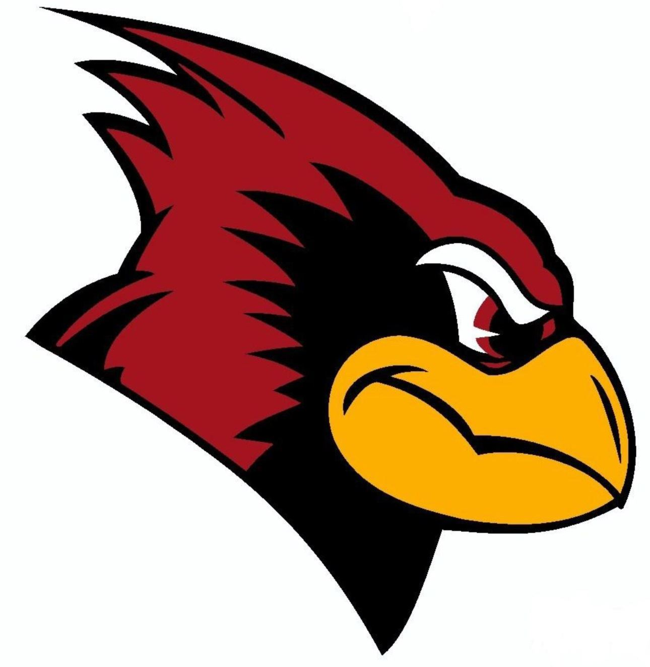 Ridgefield Park High School - Boys Varsity Football