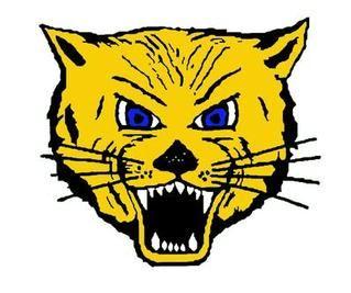 Lake Mills High School - Girls Varsity Basketball