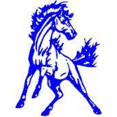 Chartiers Valley High School - Boys Varsity Basketball