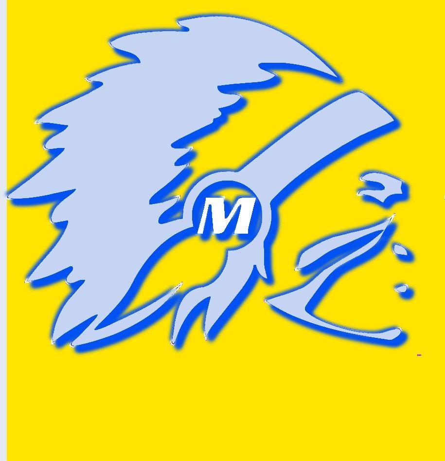 Mariemont High School - Boys Varsity Lacrosse