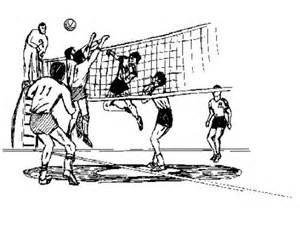 Marist High School - Boys' Varsity Volleyball