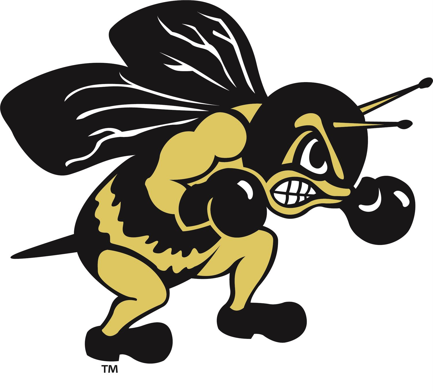 Perrysburg High School - Boys Varsity Football