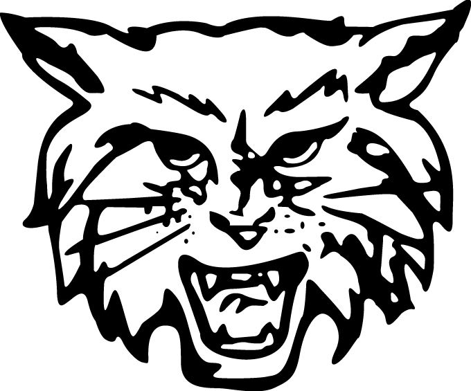 Dallastown High School - Dallastown Varsity Boys' Basketball