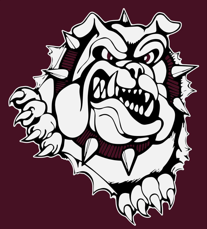 Woodridge High School - Boys Varsity Football