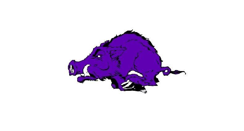 Walhalla High School - Boys Varsity Football