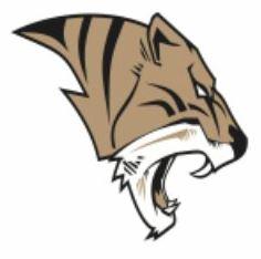 Ardmore High School - Boys Varsity Football