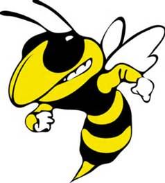 Ferndale  Area High School - Yellow Jackets