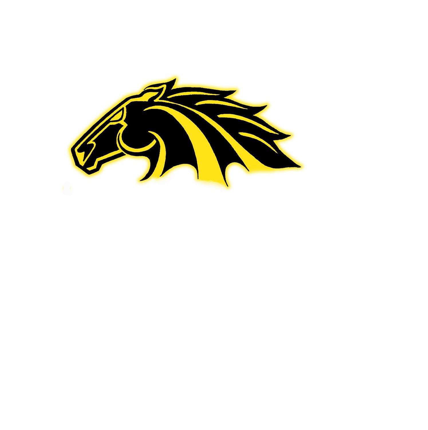 Lutheran North High School - JV Football
