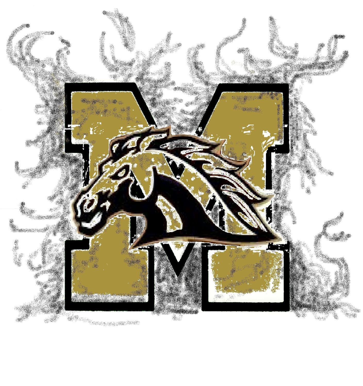 Meadow High School - Boys Varsity Football