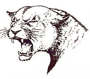 Norfolk High School - Boys Varsity Basketball
