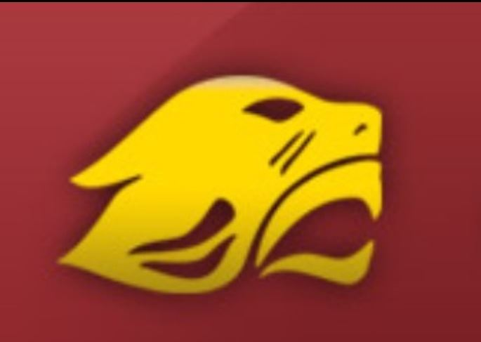 Concordia University Chicago - Concordia University Chicago Womens Vball