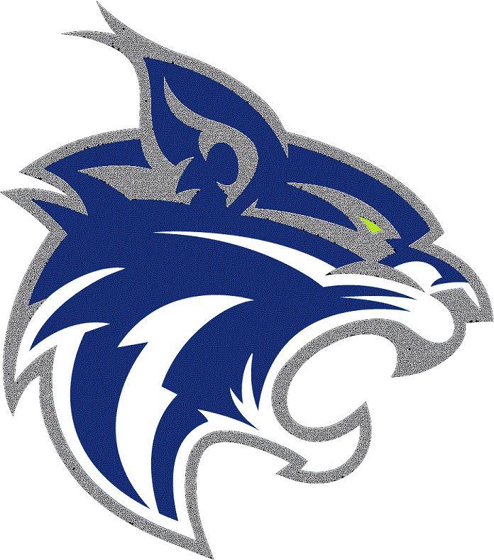 Finn Football Teams 2017 - West Chicago Wildcats Varsity