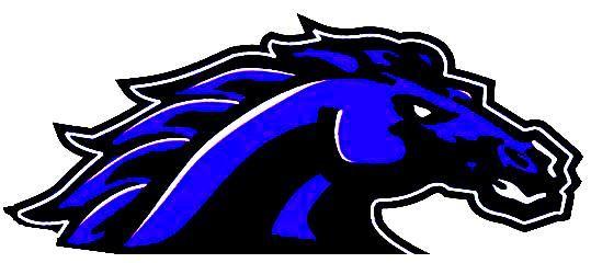 South Border [Wishek/Ashley] High School - South Border Mustangs Football