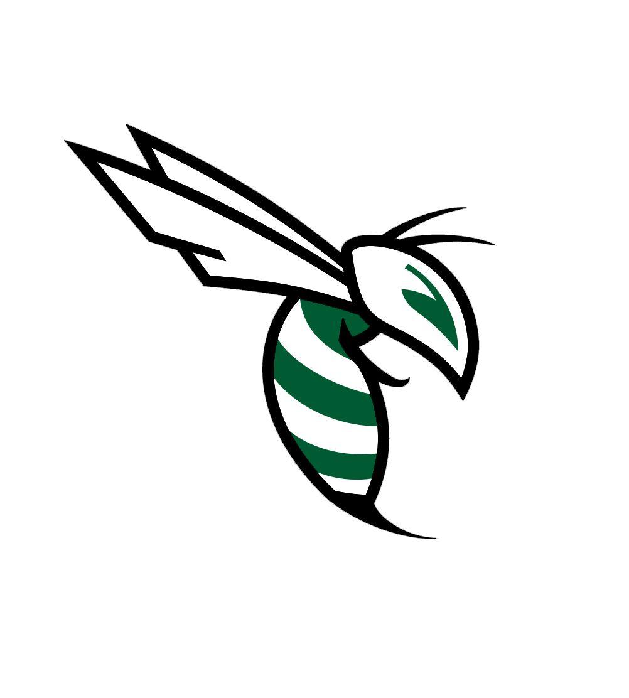 Carter High School - Lady Hornets Varsity Basketball