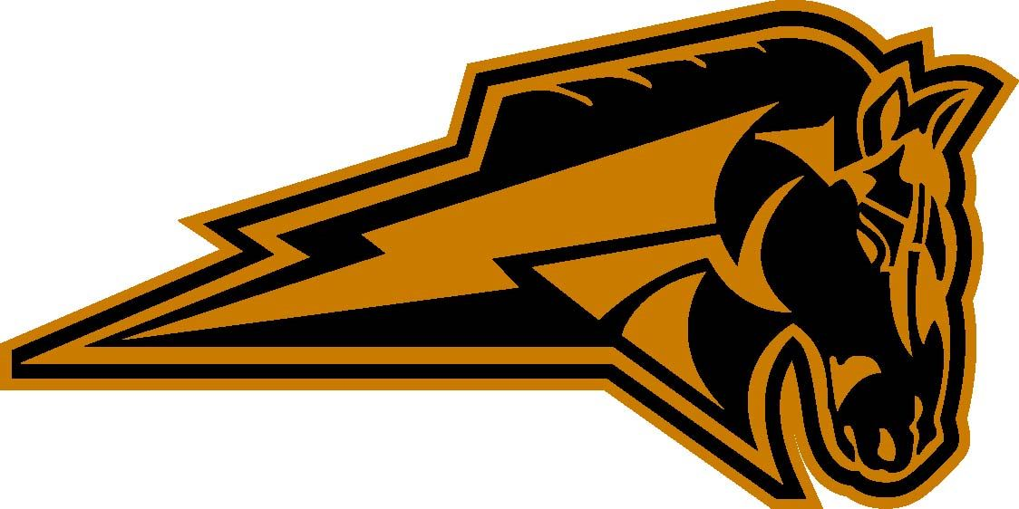 Blackstone-Millville High School - Boys Varsity Football