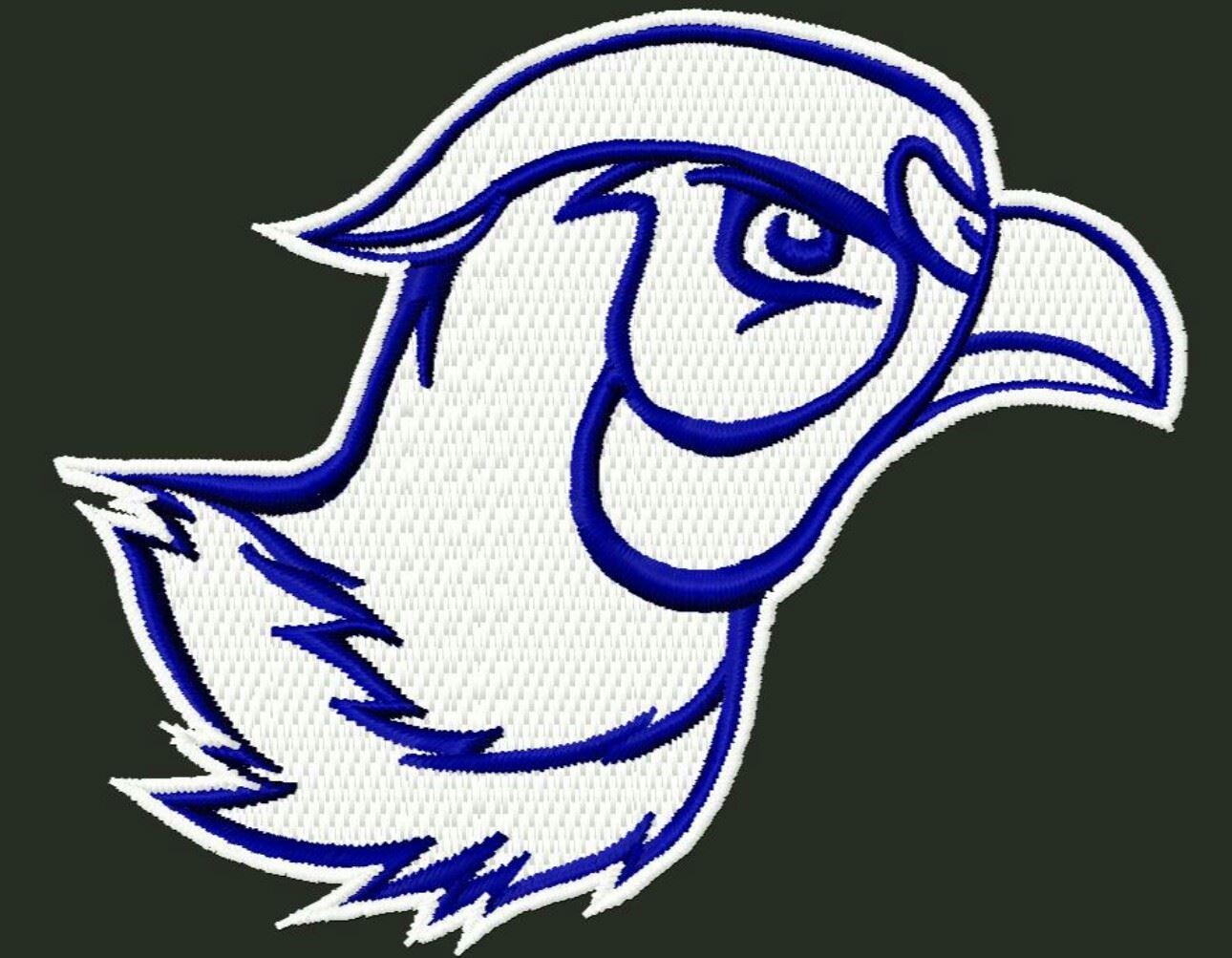 Redfield/Doland High School - Boys Varsity Football