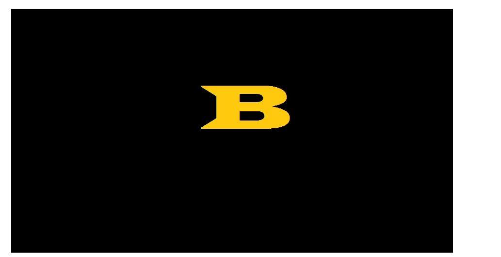 Beaver High School - Boys Varsity Football