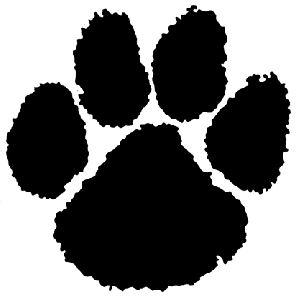 Tucker County High School - Boys Varsity Basketball