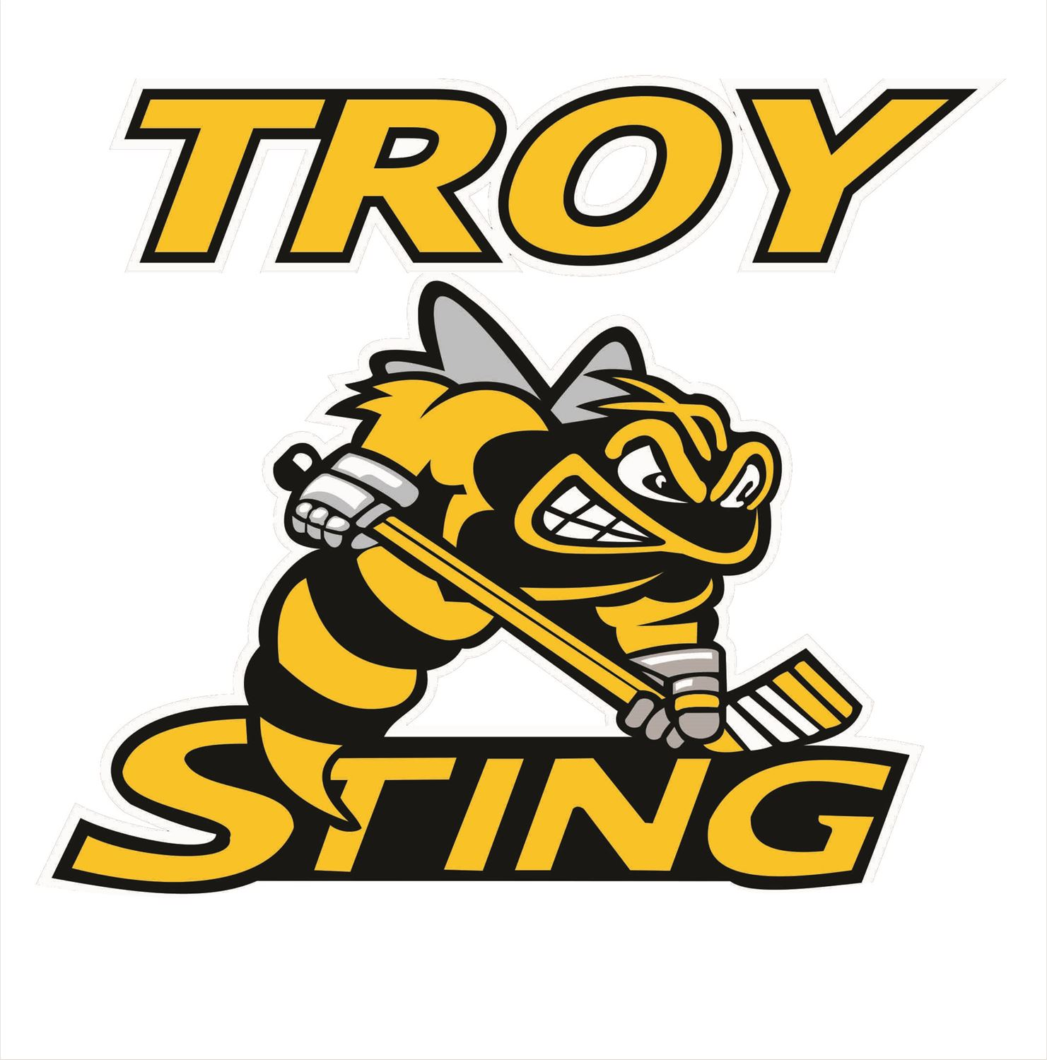 Heather Armstrong Youth Teams - 2004 Troy Sting