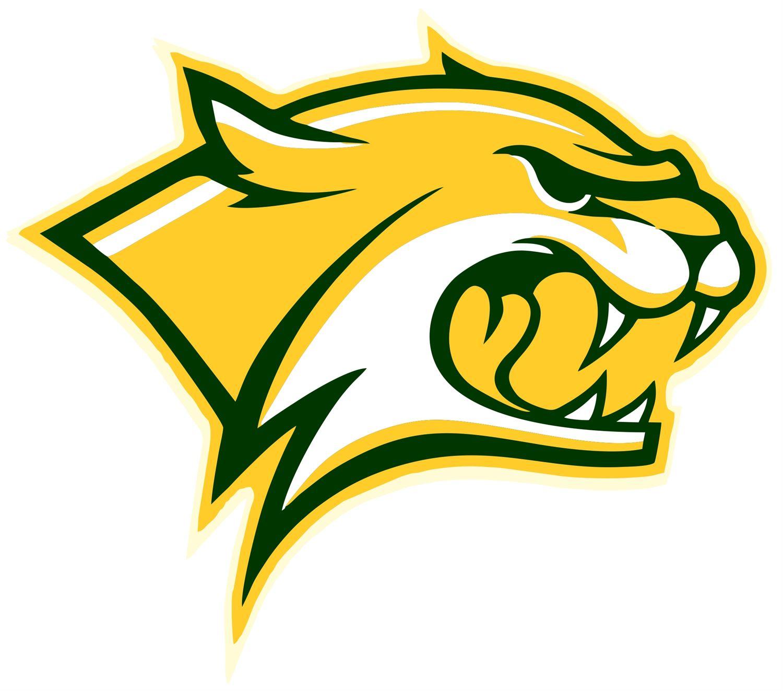Walker High School - Boys Varsity Basketball