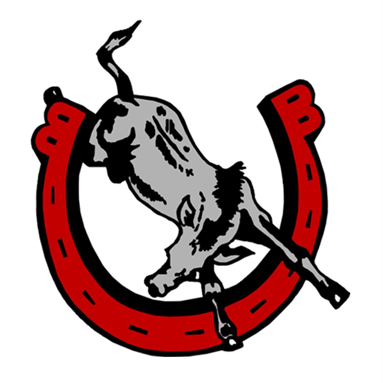 Bedford High School - Bedford Mules Boys Basketball