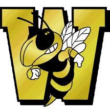 Wasatch Wasps - Wasatch Varsity Basketball