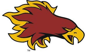 Devils Lake High School - Devils Lake Firebirds BBB