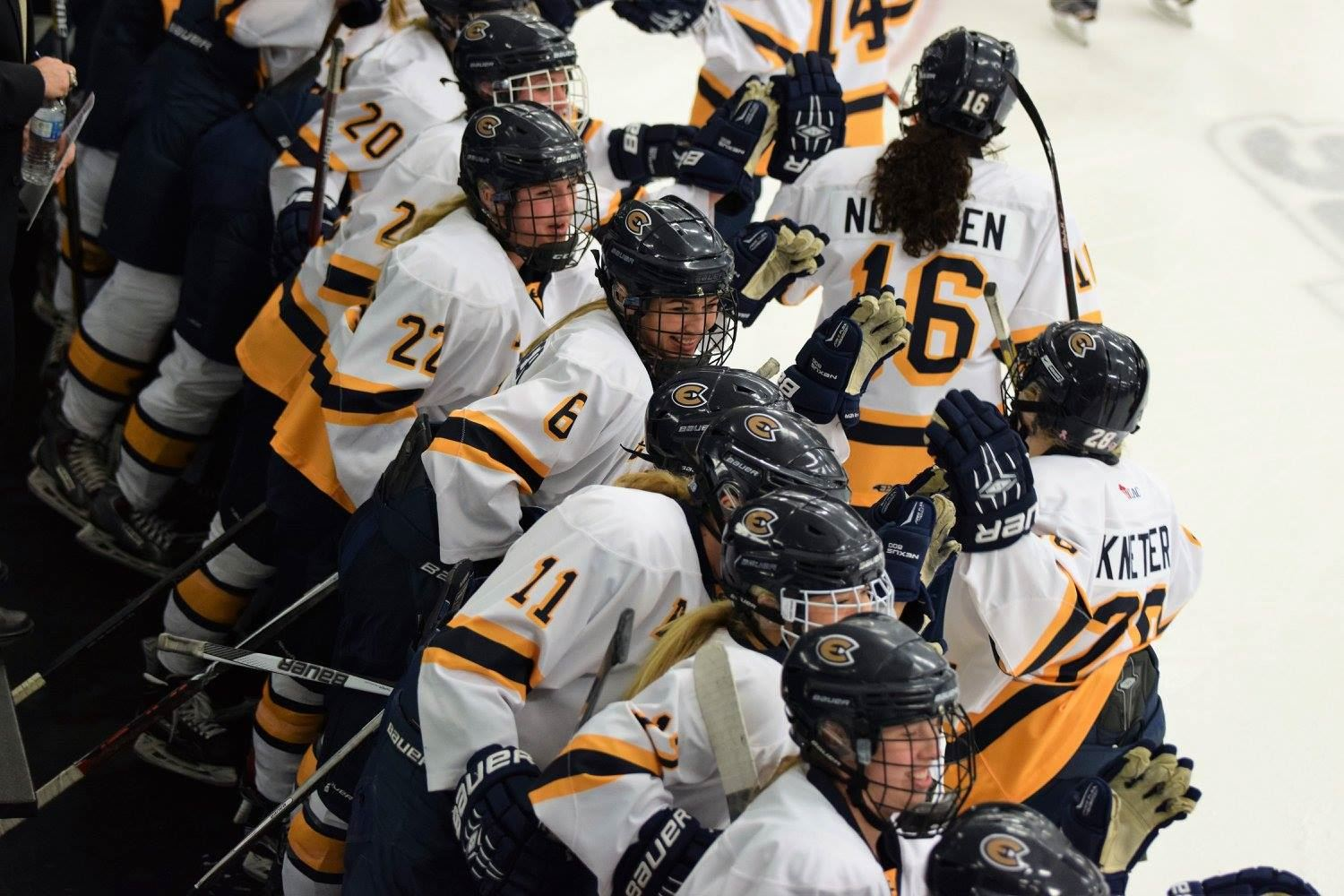 University of Wisconsin - Eau Claire - Women's Hockey