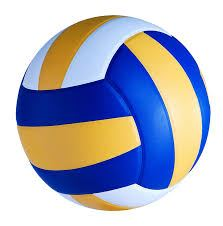 North Iowa Area CC - NIACC Women's Volleyball