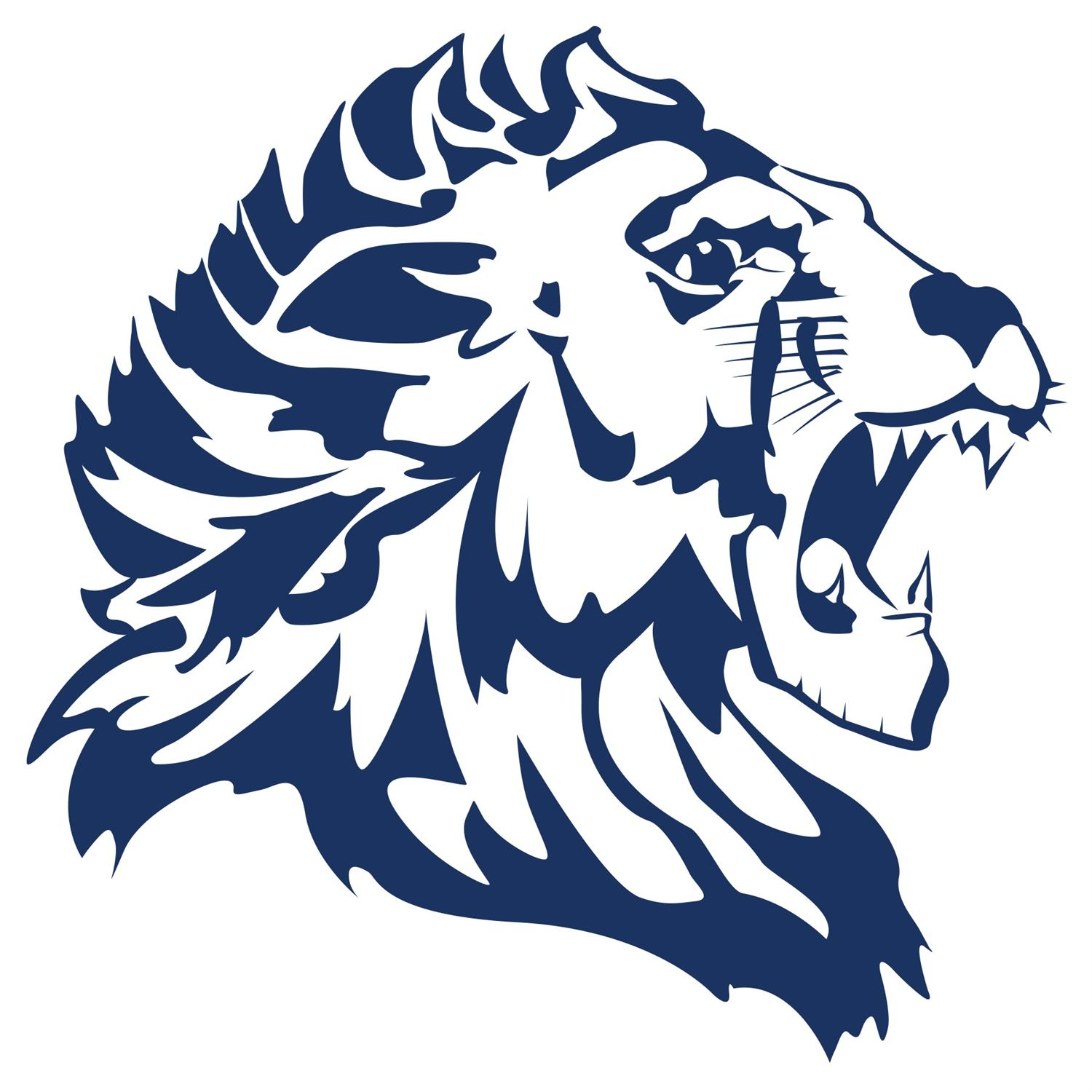 Lisle High School - Varsity Football