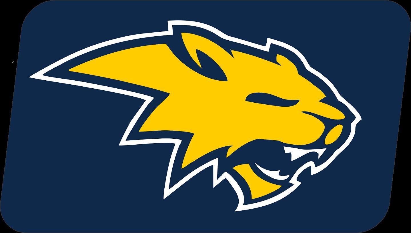 Neuqua Valley High School - Varsity