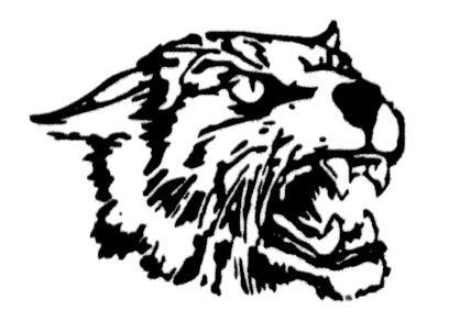 Kelly Catholic High School - Wildcats