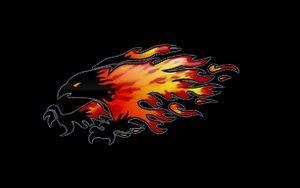 Northeast Pop Warner- APW - Firebirds