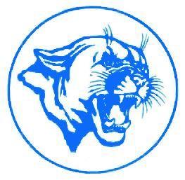 Ansbach High School - Ansbach Cougars