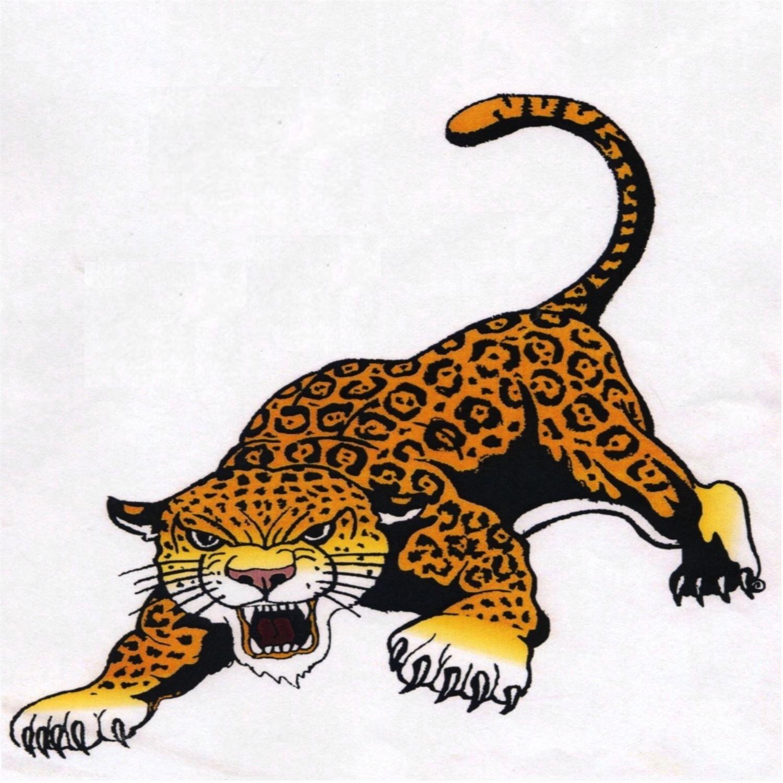 Northern Cass High School - Jaguar Football