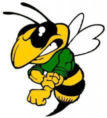 Williamsburg Hornets - Gold Mighty Mites