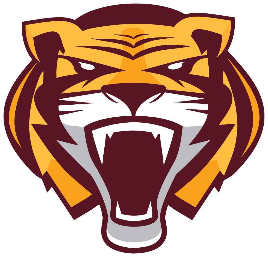 Stewartville High School - Boys Varsity Football