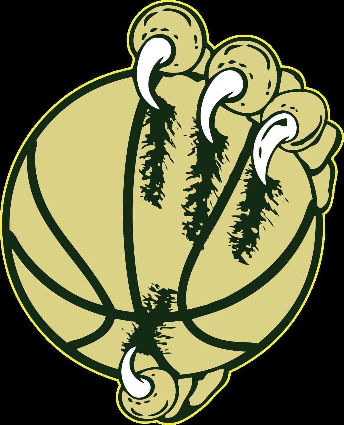 Falcon High School  - Boys' Varsity Basketball - New
