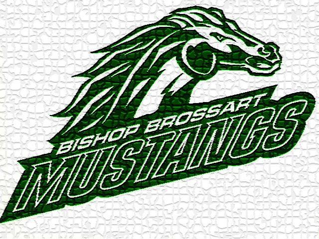 Bishop Brossart High School - Boys' Varsity Basketball