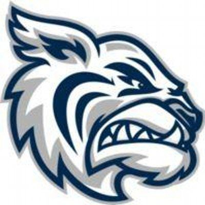 Academy At The Lakes - Wildcats Varsity Football