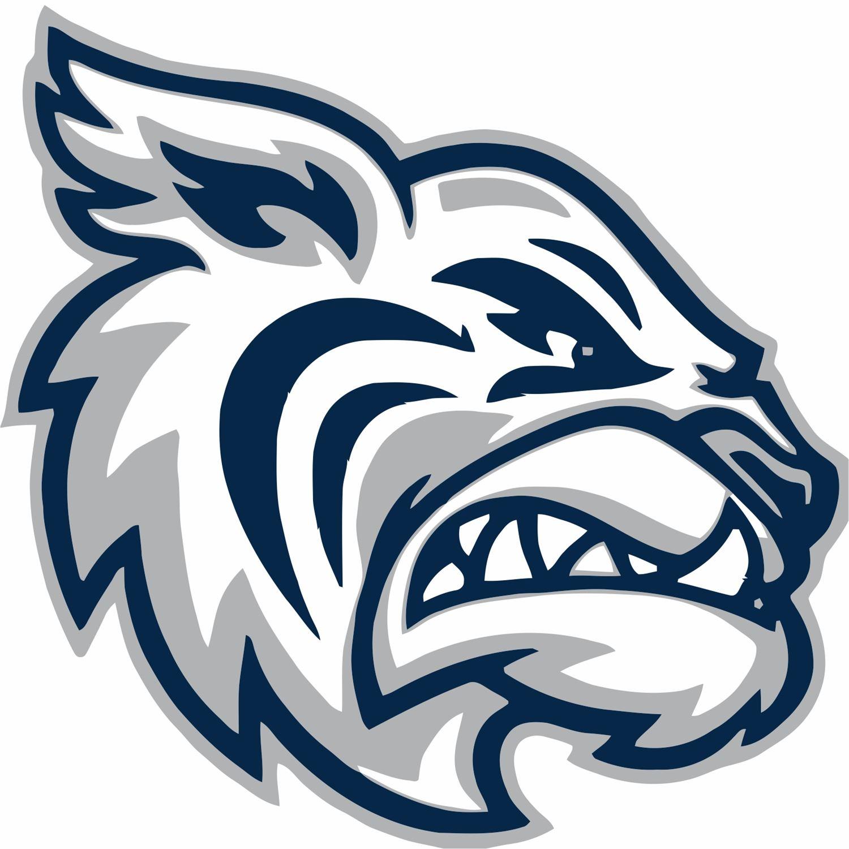 Academy At The Lakes - Wildcat Varsity Basketball