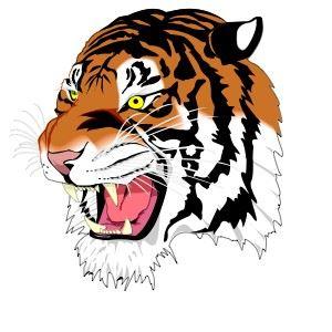 Ansonia High School - Girls' Varsity Basketball