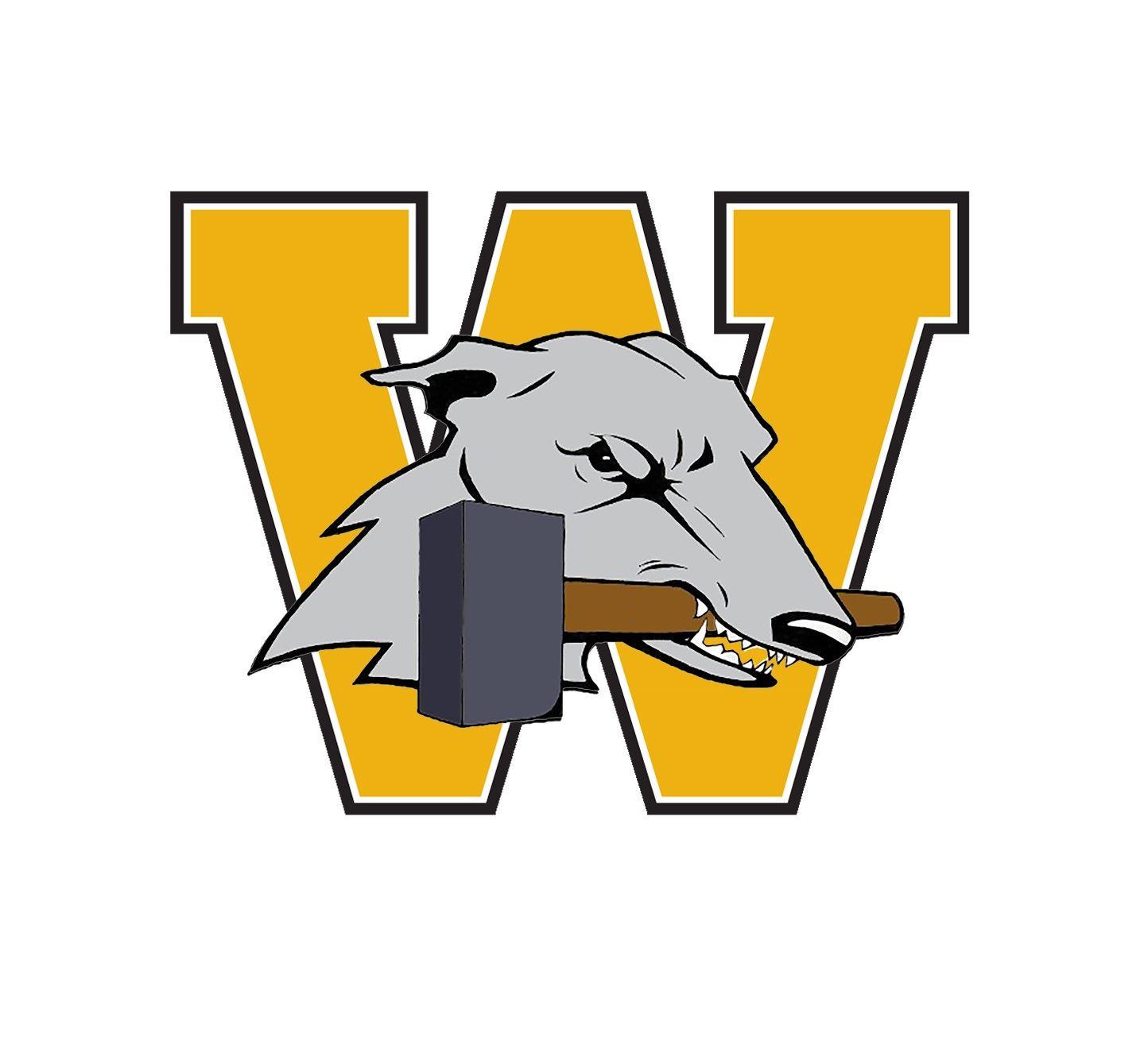 Wilmington Area High School - Boys Varsity Football