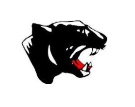 Schuylkill Valley High School - Schuylkill Valley Panthers