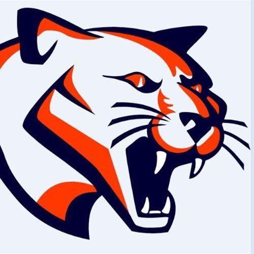 Cougars - Fallston 14U Blue