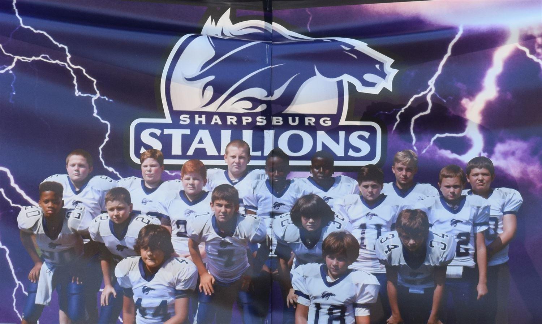 Clayton Stallions - 12U Stallions