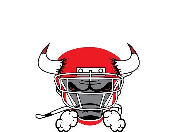 Los Toros Bulls- SDYFC - 2017 Los Toros Bulls 14U