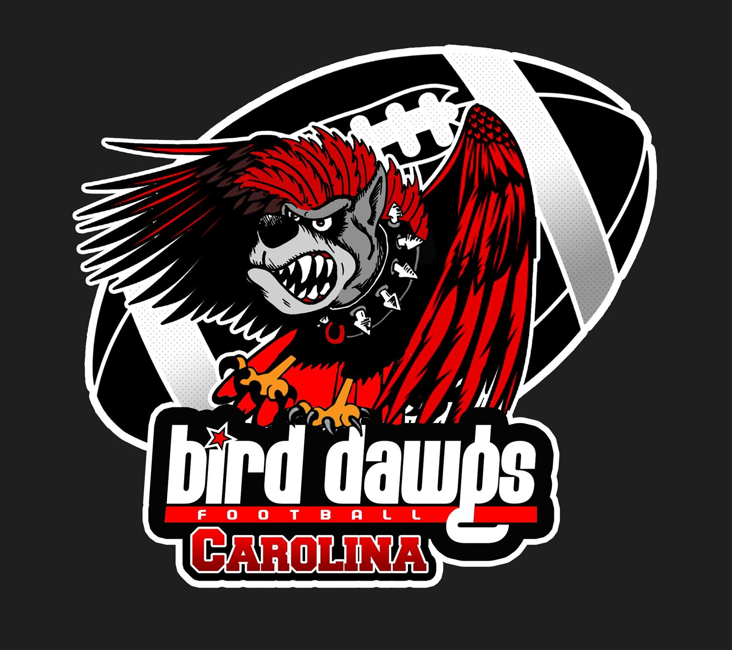 Carolina Bird Dawgs - 14U