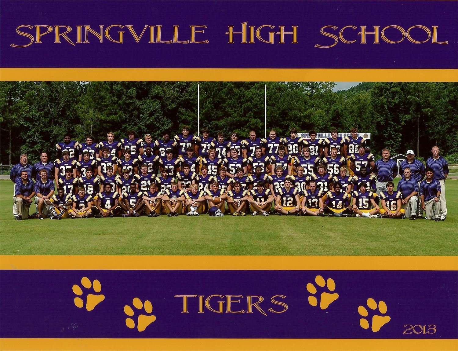 Springville High School - Boys Varsity Football